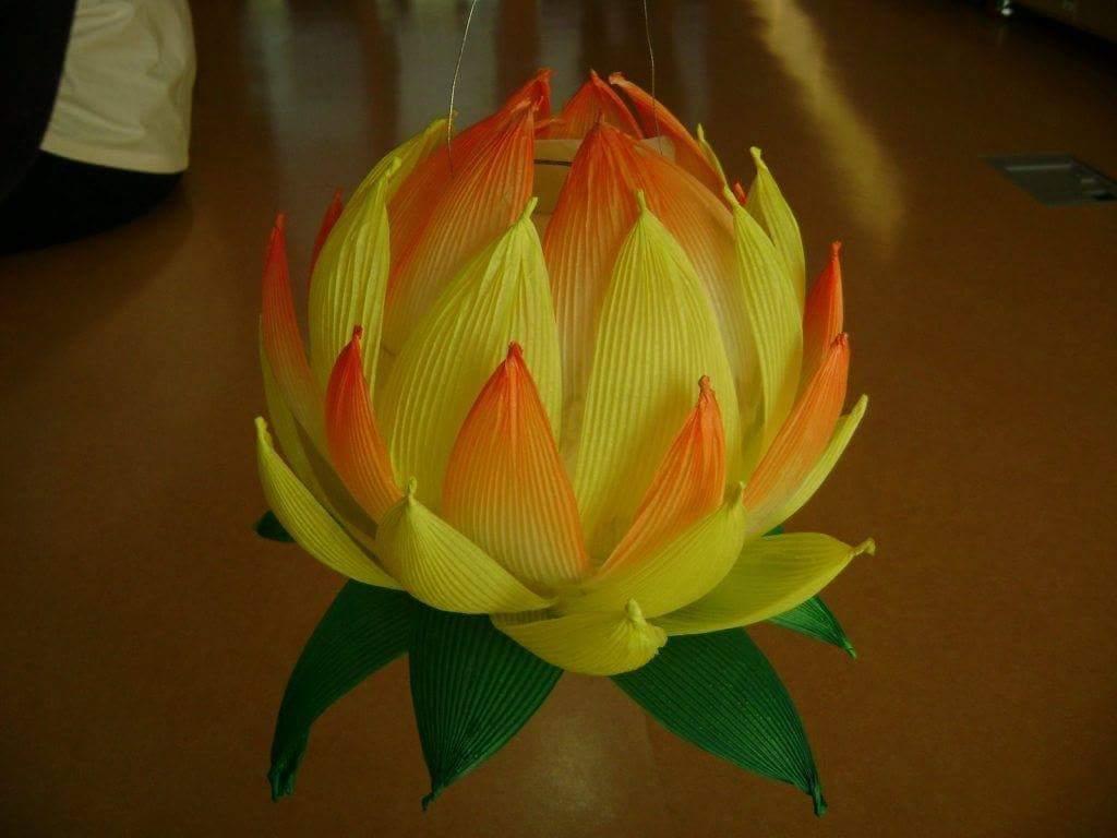 Diy Lotus And Paper Lanterns Art Amp Craft Ideas