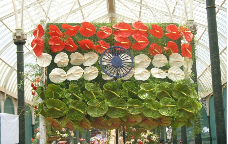 Decorations archives art craft ideas for 15th august decoration ideas